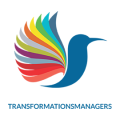 Transformationsmanagers